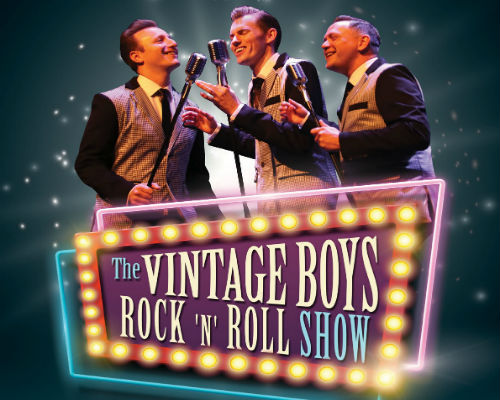 THE VINTAGE BOYS-ROCK 'N' ROLL SHOW