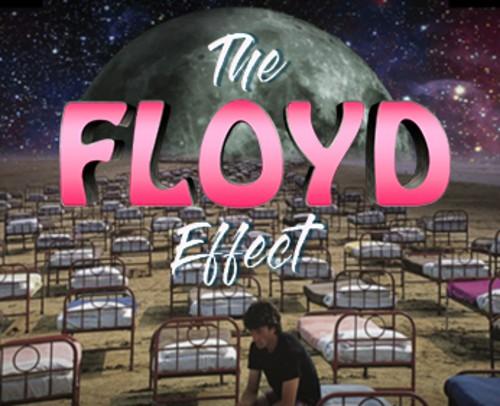THE FLOYD EFFECT - DARK SIDE OF REASON